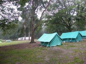 summer camp 249